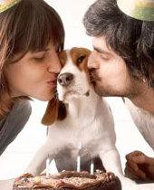 반려 동물 &출산/결혼에 대한 인식의 변화